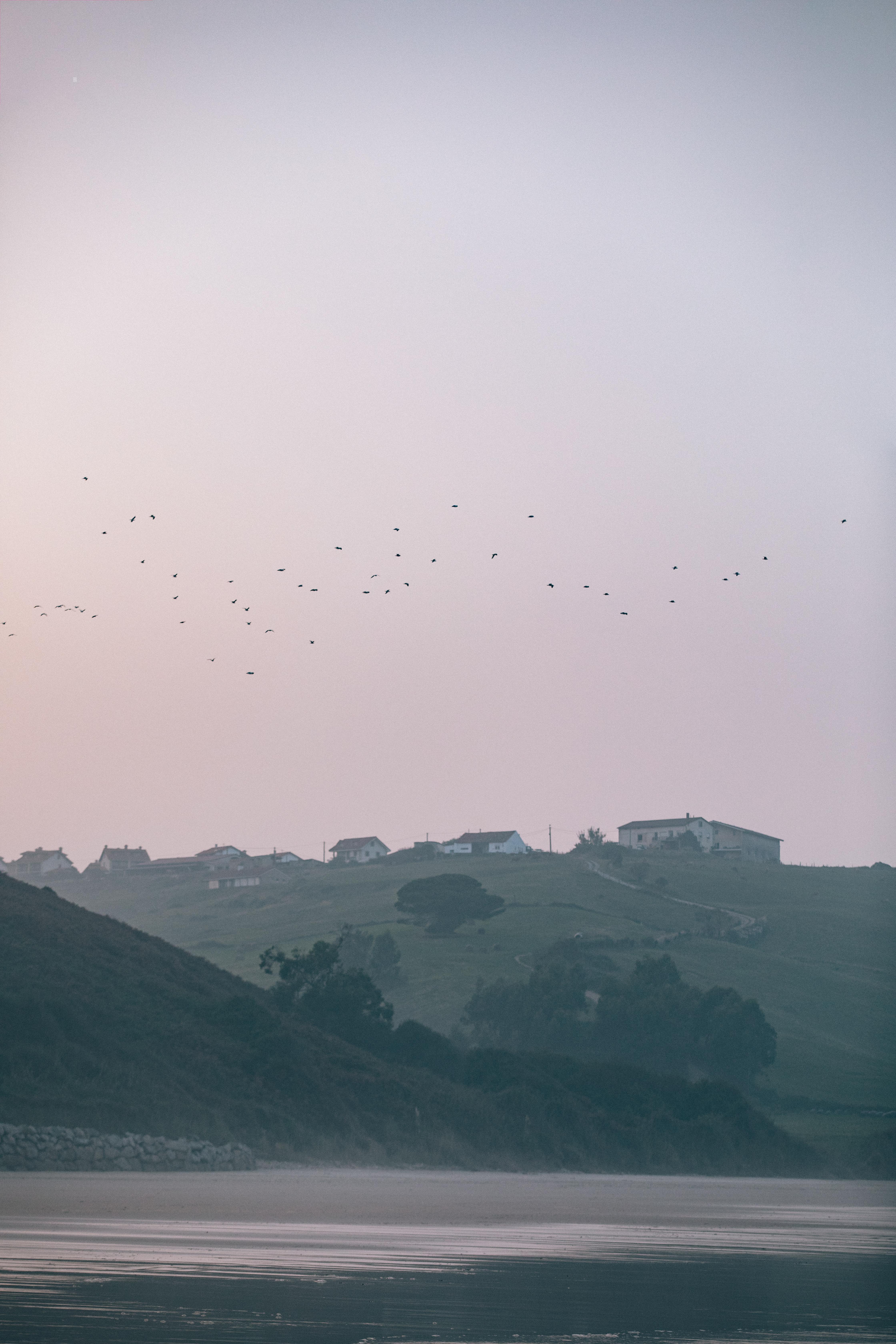 Oyambre_Sunset